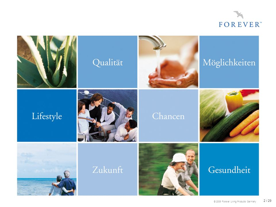 23 / 29 © 2005 Forever Living Products Germany Der FOREVER-Vergütungsplan Beitritts- und Jahresgebühr keine Großhandelsmarge bis zu 30% Persönlicher Bonus 5% - 18% Teambonus 3% - 13% Führungsbonus 2% - 9%