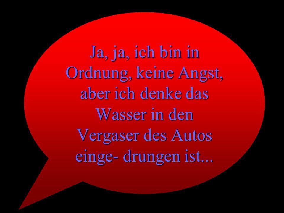 Ja, ja, ich bin in Ordnung, keine Angst, aber ich denke das Wasser in den Vergaser des Autos einge- drungen ist...