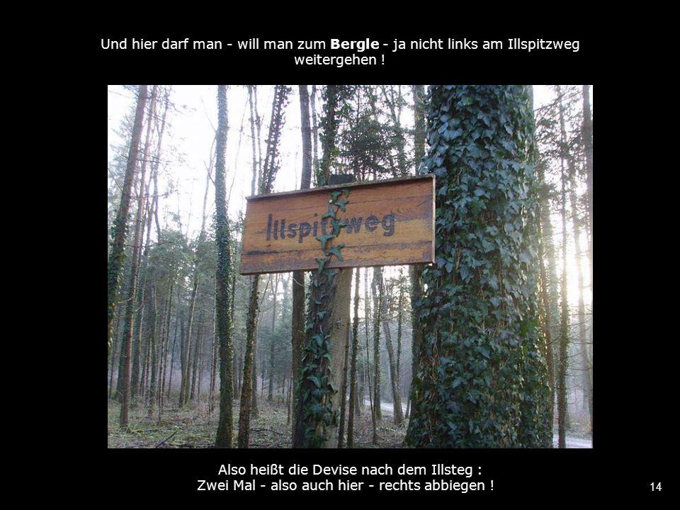 14 Und hier darf man - will man zum Bergle - ja nicht links am Illspitzweg weitergehen .
