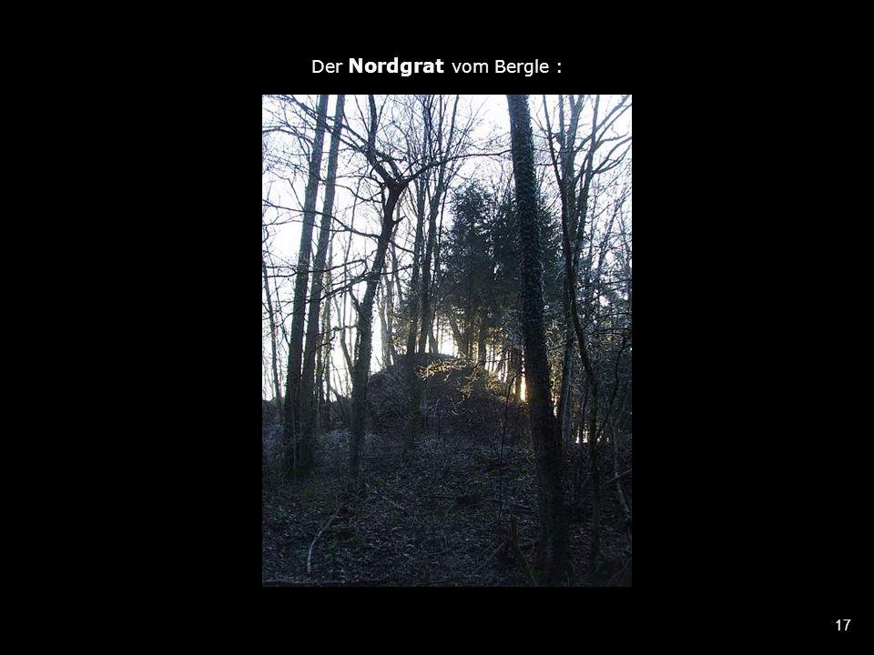 17 Der Nordgrat vom Bergle :