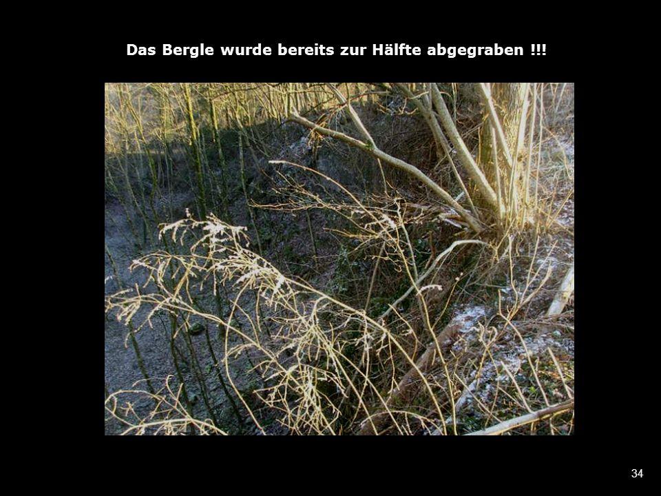 34 Das Bergle wurde bereits zur Hälfte abgegraben !!!
