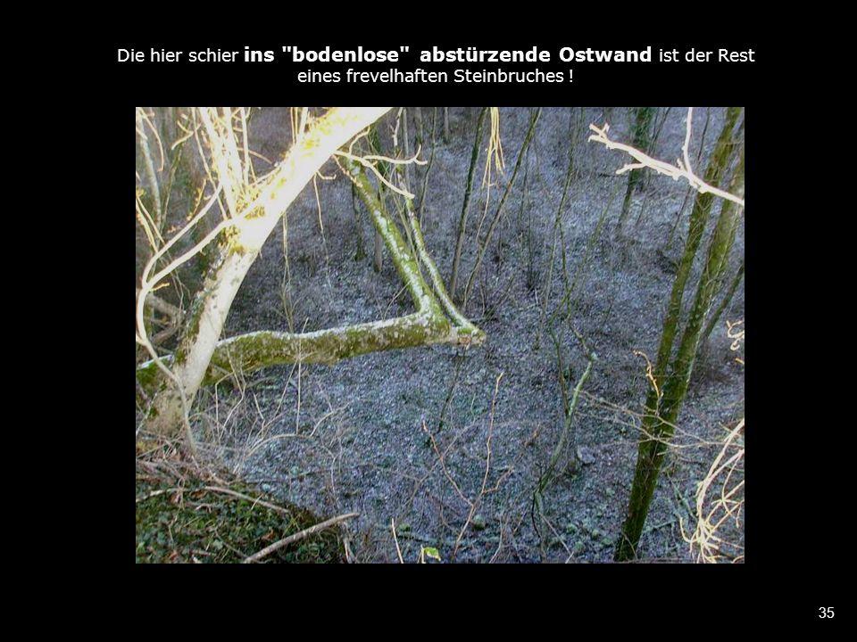 35 Die hier schier ins bodenlose abstürzende Ostwand ist der Rest eines frevelhaften Steinbruches !