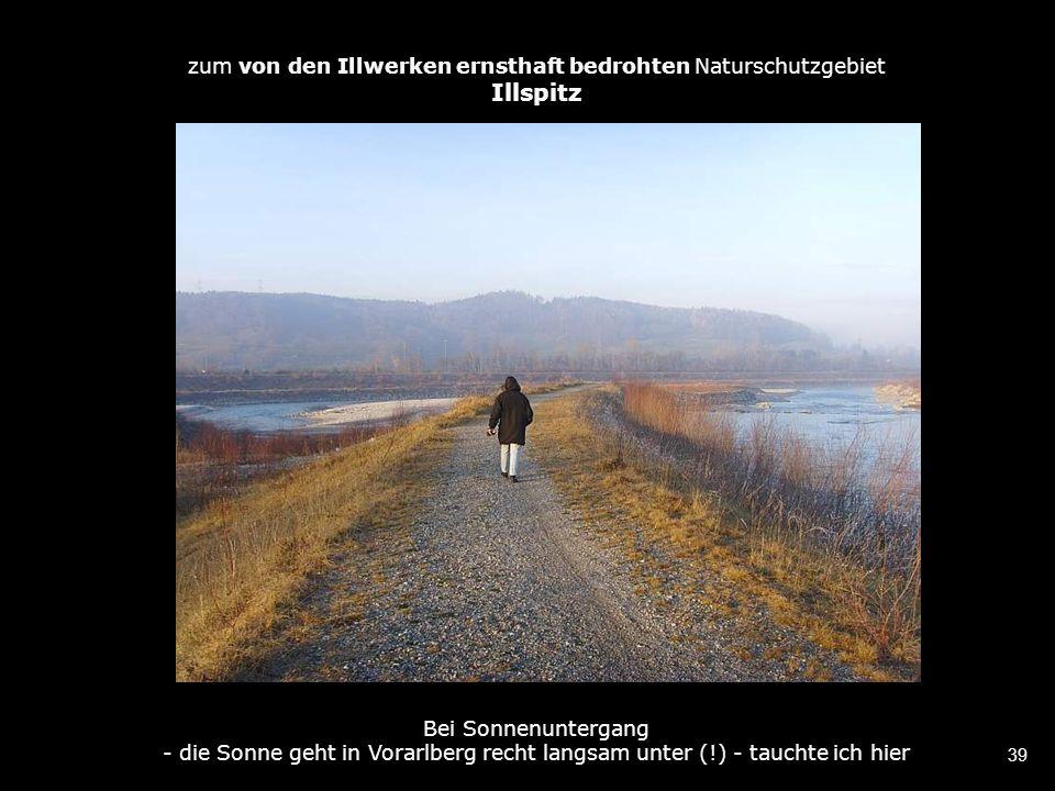 39 zum von den Illwerken ernsthaft bedrohten Naturschutzgebiet Illspitz Bei Sonnenuntergang - die Sonne geht in Vorarlberg recht langsam unter (!) - tauchte ich hier