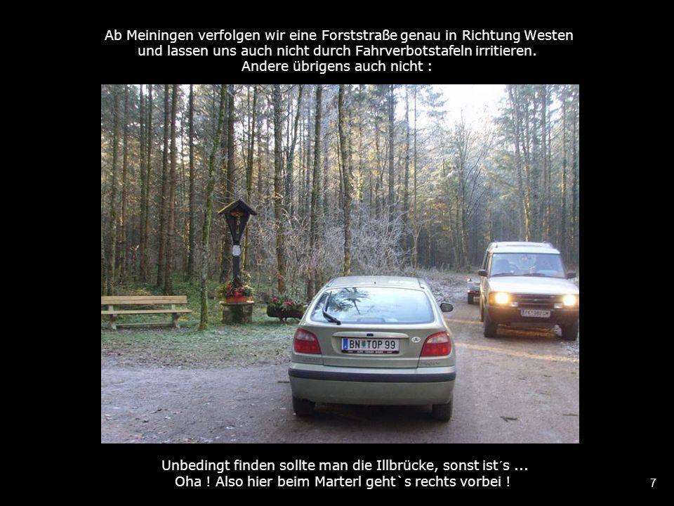 7 Ab Meiningen verfolgen wir eine Forststraße genau in Richtung Westen und lassen uns auch nicht durch Fahrverbotstafeln irritieren.