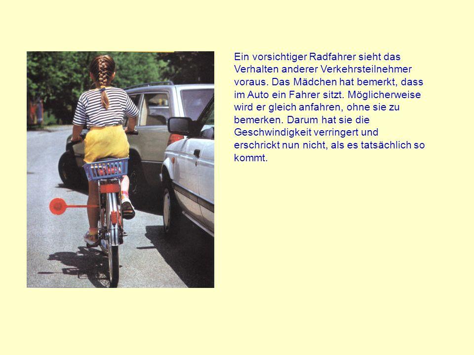 Radwege sind nicht zuverlässig sicher. Das haben wir schon auf dem vorigen Bild gesehen. Oft stehen Abfalleimer im Weg, gehen Fussgänger verbotenerwei