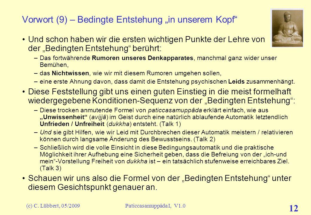 (c) C. Lübbert, 05/2009Paticcasamuppâda I, V1.0 11 Vorwort (8) – Bedingte Entstehung in unserem Kopf Was versuchen wir – alle, die wir manchmal sitzen