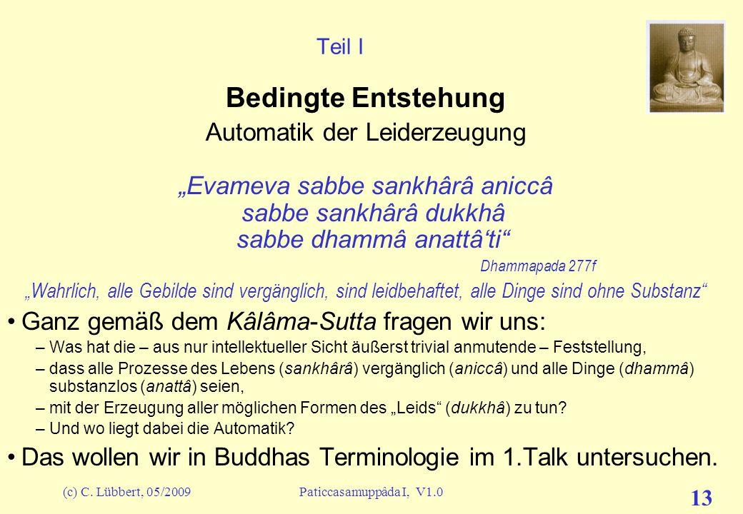 (c) C. Lübbert, 05/2009Paticcasamuppâda I, V1.0 12 Vorwort (9) – Bedingte Entstehung in unserem Kopf Und schon haben wir die ersten wichtigen Punkte d