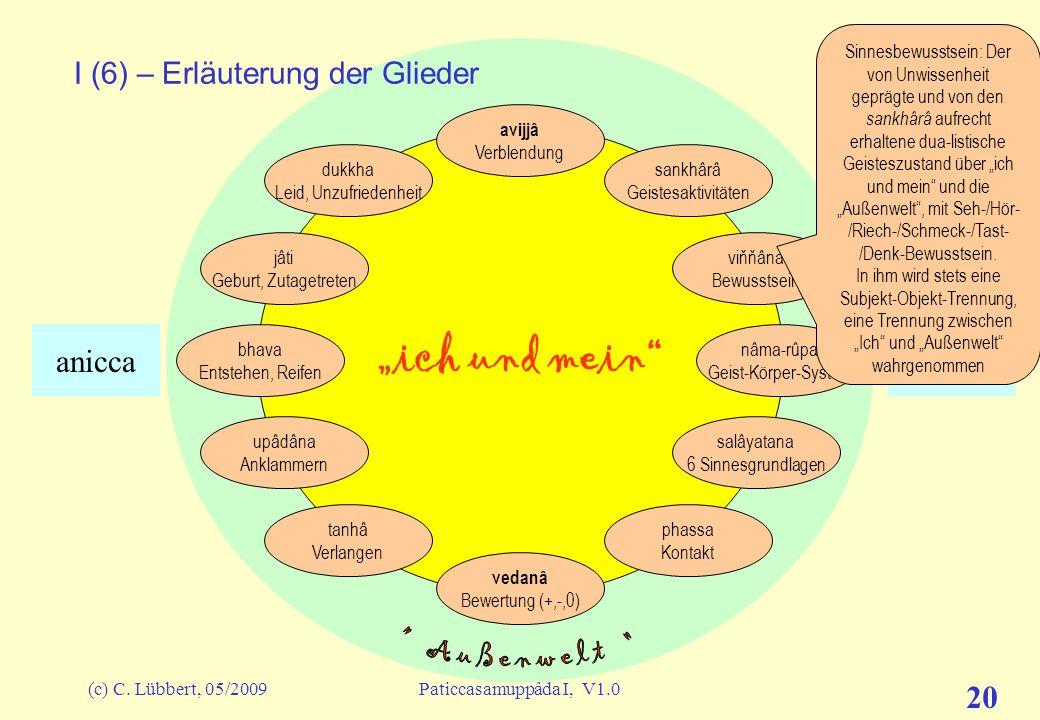 (c) C. Lübbert, 05/2009Paticcasamuppâda I, V1.0 19 ich und mein I (5) – Erläuterung der Glieder avijjâ Verblendung sankhârâ Geistesaktivitäten viňňâna