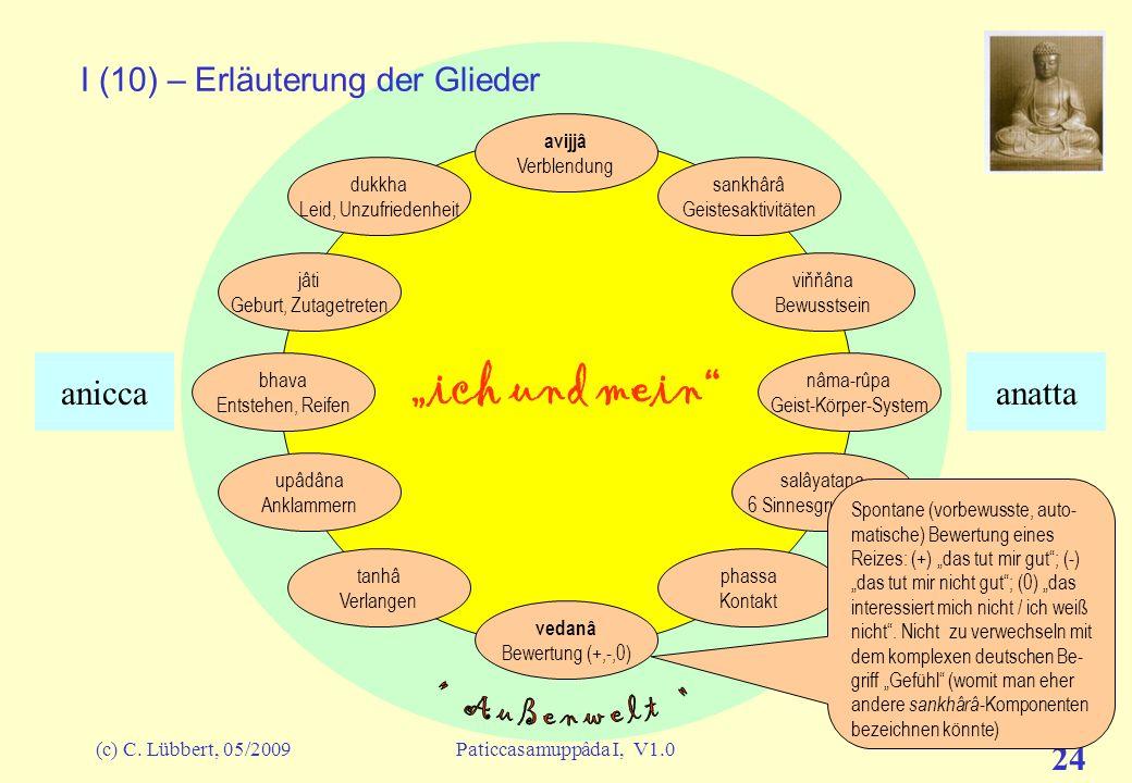 (c) C. Lübbert, 05/2009Paticcasamuppâda I, V1.0 23 ich und mein I (9) – Erläuterung der Glieder avijjâ Verblendung sankhârâ Geistesaktivitäten viňňâna