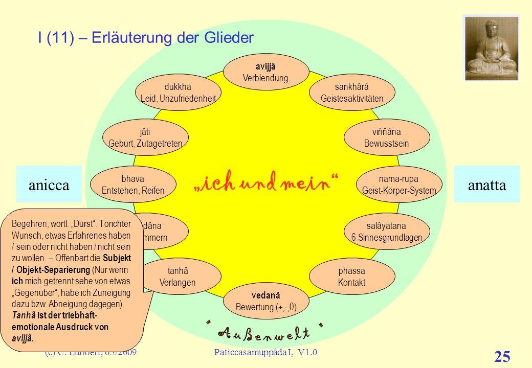 (c) C. Lübbert, 05/2009Paticcasamuppâda I, V1.0 24 ich und mein I (10) – Erläuterung der Glieder avijjâ Verblendung sankhârâ Geistesaktivitäten viňňân