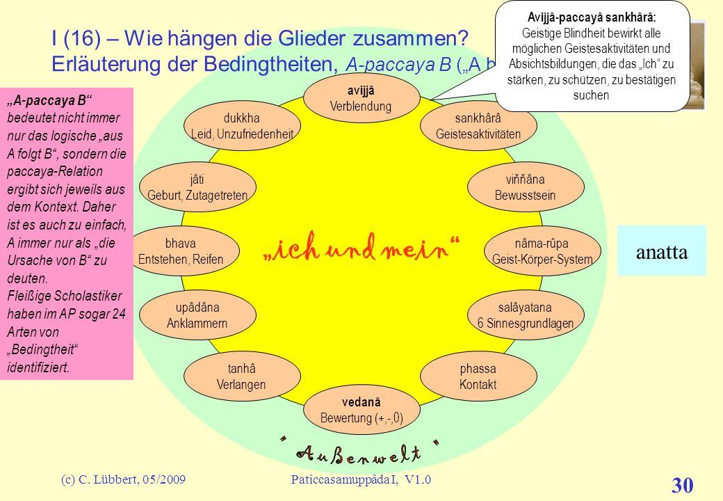(c) C. Lübbert, 05/2009Paticcasamuppâda I, V1.0 29 ich und mein I (15) – Erläuterung der Glieder avijjâ Verblendung sankhârâ Geistesaktivitäten viňňân