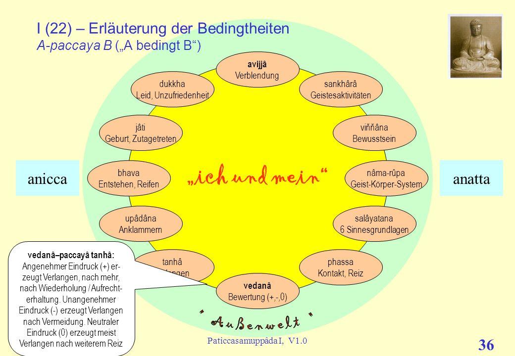 (c) C. Lübbert, 05/2009Paticcasamuppâda I, V1.0 35 ich und mein I (21) – Erläuterung der Bedingtheiten A-paccaya B (A bedingt B) avijjâ Verblendung sa
