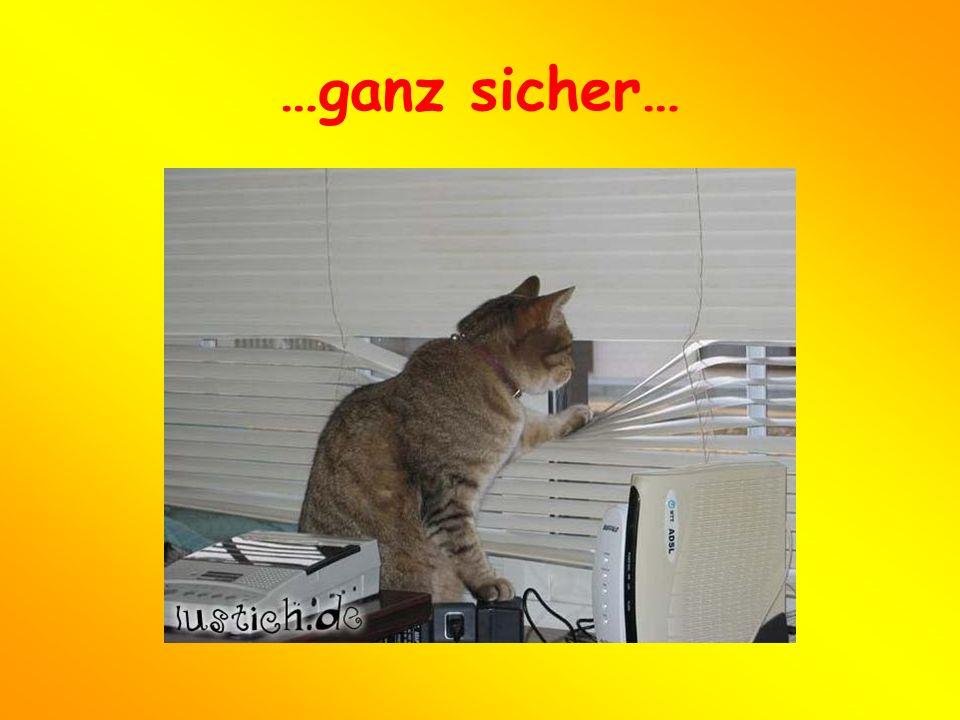 …oder müde vom vielen Telefonieren in ihrem Haus vorfinden!!!