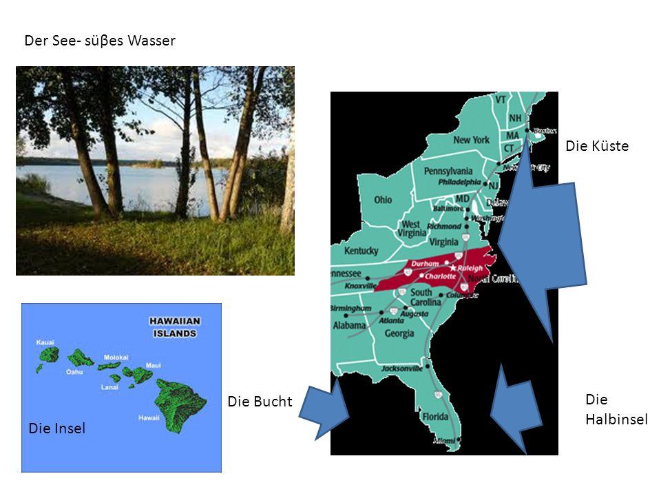 Der See- süβes Wasser Die Küste Die Halbinsel Die Bucht Die Insel