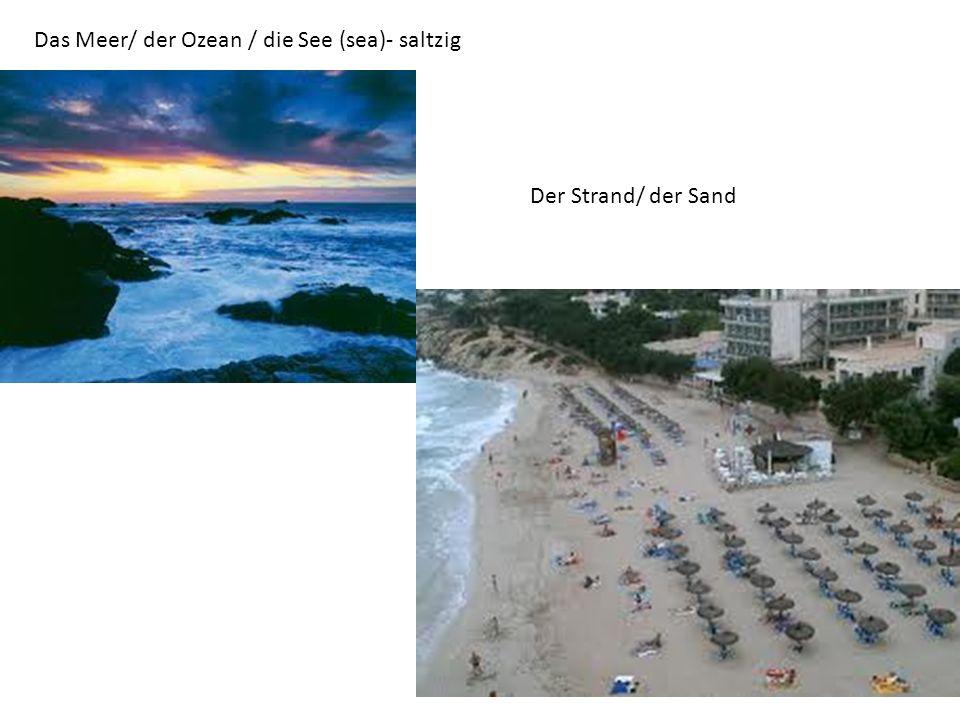 Das Meer/ der Ozean / die See (sea)- saltzig Der Strand/ der Sand