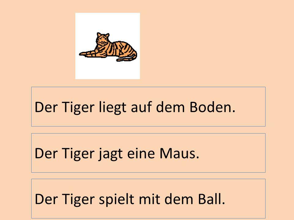 Der Tiger liegt auf dem Boden. Der Tiger jagt eine Maus. Der Tiger spielt mit dem Ball.