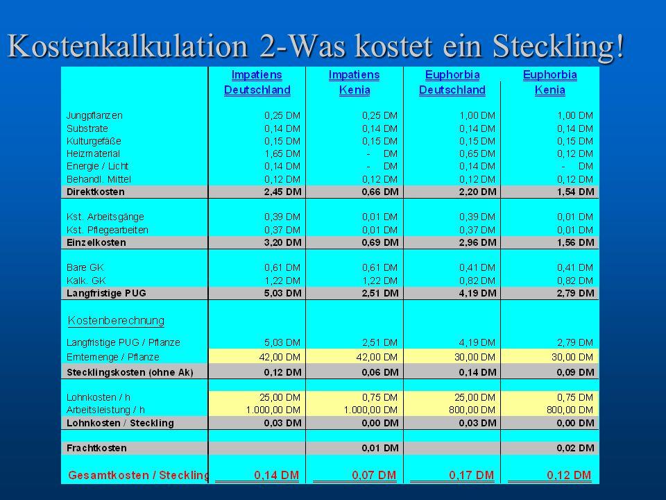 Kostenkalkulation 2-Was kostet ein Steckling!