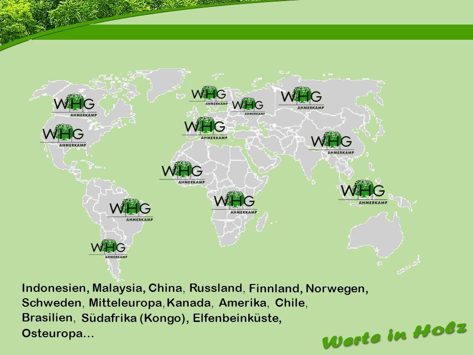 Firmenvorstellung Indonesien, Malaysia,China, Russland, Finnland, Norwegen, Schweden, Mitteleuropa, Kanada, Amerika, Chile, Brasilien, Osteuropa… Süda
