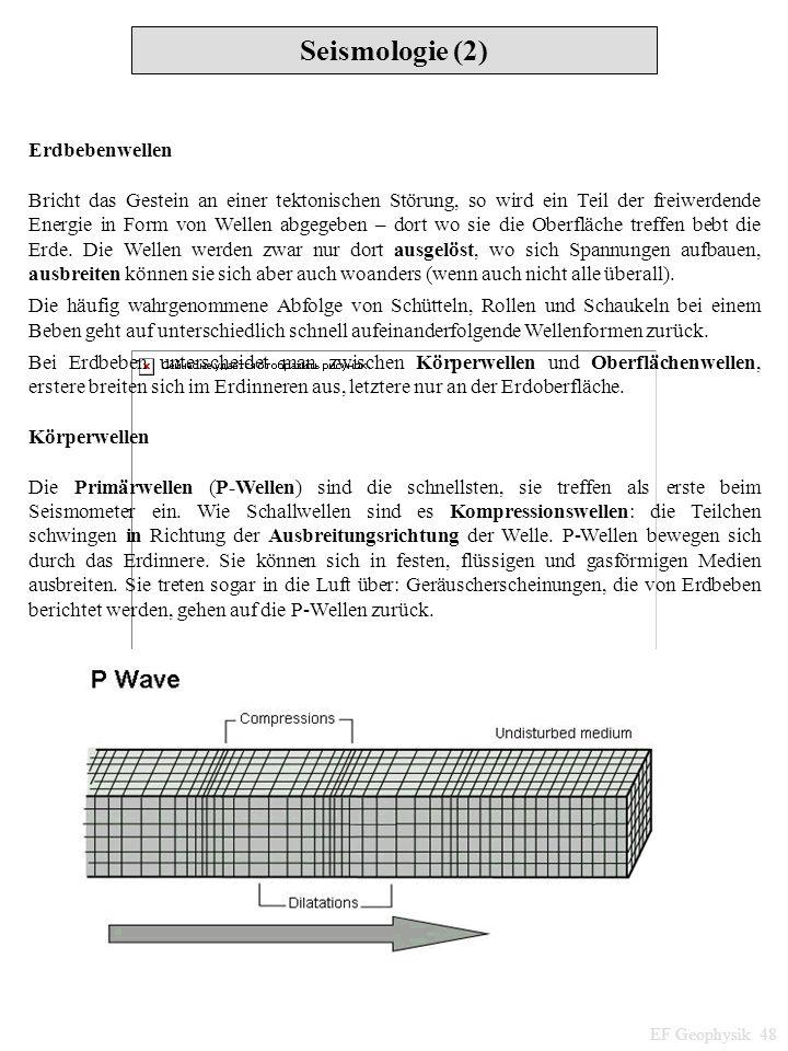 Seismologie (2) EF Geophysik 48 Erdbebenwellen Bricht das Gestein an einer tektonischen Störung, so wird ein Teil der freiwerdende Energie in Form von