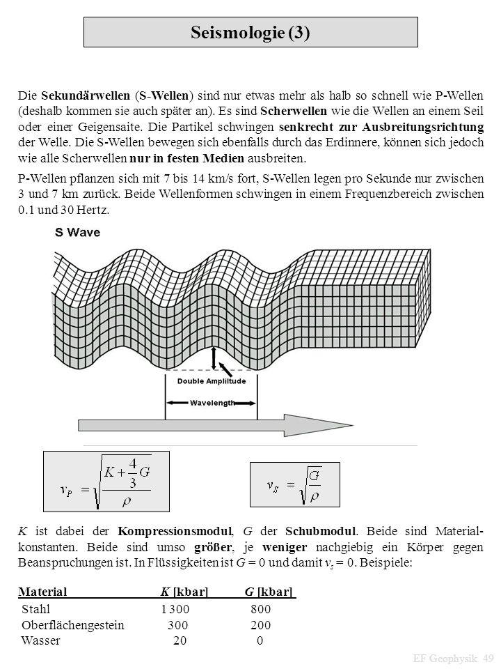 Seismologie (3) EF Geophysik 49 Die Sekundärwellen (S-Wellen) sind nur etwas mehr als halb so schnell wie P-Wellen (deshalb kommen sie auch später an)