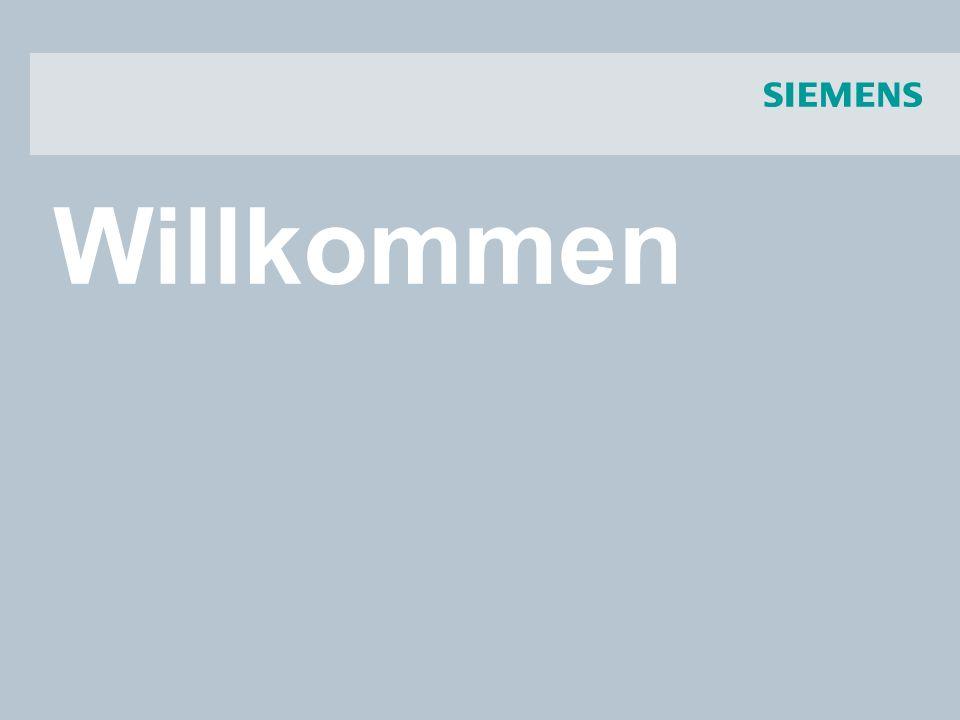 © Siemens AG 2008 - Änderungen vorbehalten Industry Sector 18.03.2008IA CD DM PMSeite 12/45 SIVACON S8 Franchise- System Kundennutzen Technische Daten Applikationen Beschreibung Niederspannungs-Schaltanlage SIVACON S8 Hochwertiges Industriedesign