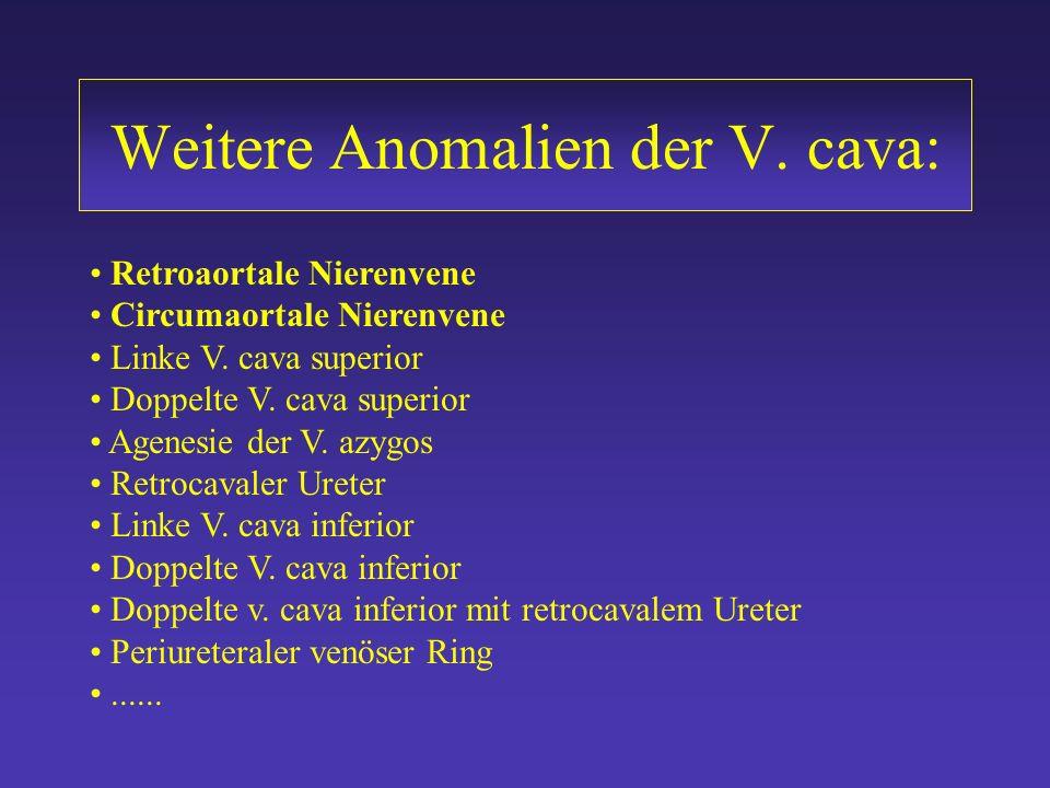 V. azygos/ hemiazygos Kontinuation II Prävalenz von 0,6 % Agenesie des hepatischen Traktes der V. cava inferior Drainage des Blutes der unteren Körper