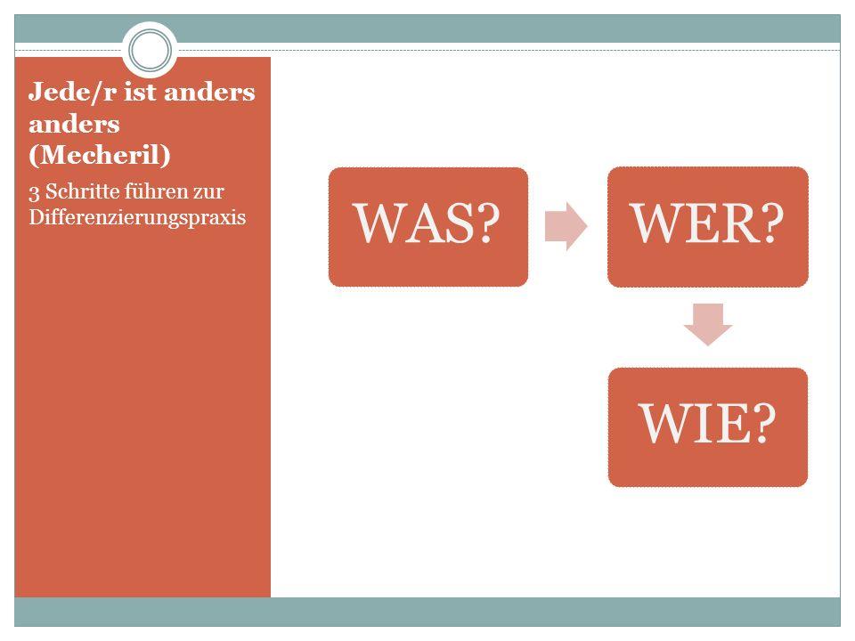 Jede/r ist anders anders (Mecheril) 3 Schritte führen zur Differenzierungspraxis WAS?WER?WIE?