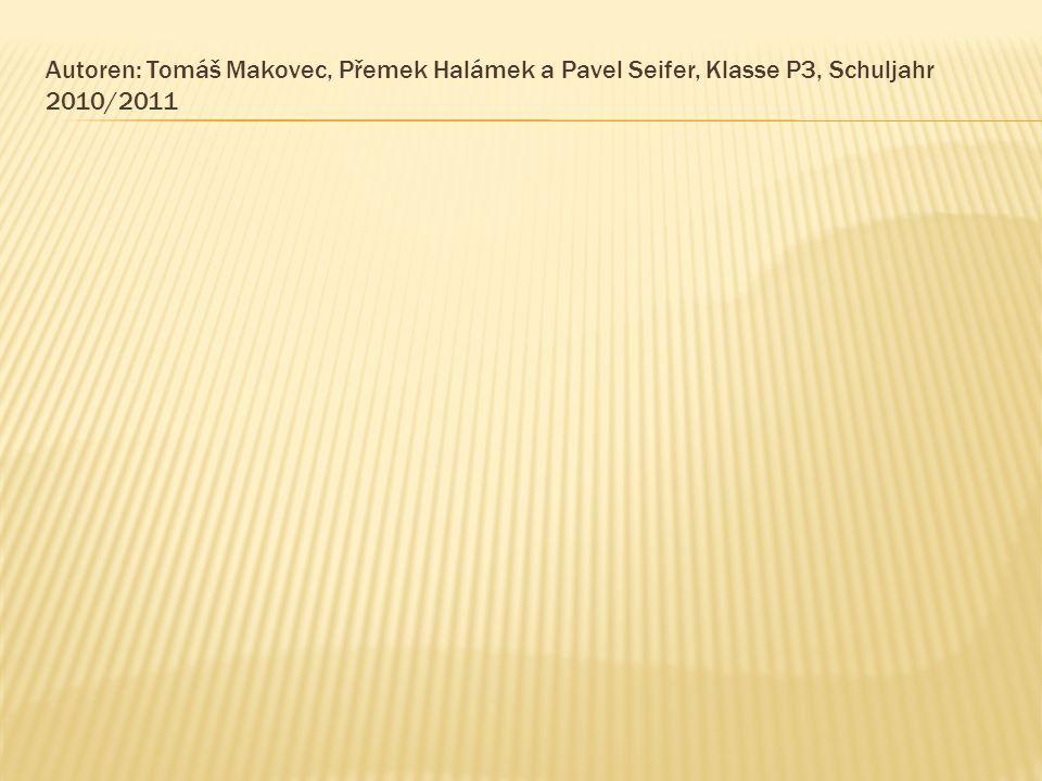 Autoren: Tomáš Makovec, Přemek Halámek a Pavel Seifer, Klasse P3, Schuljahr 2010/2011