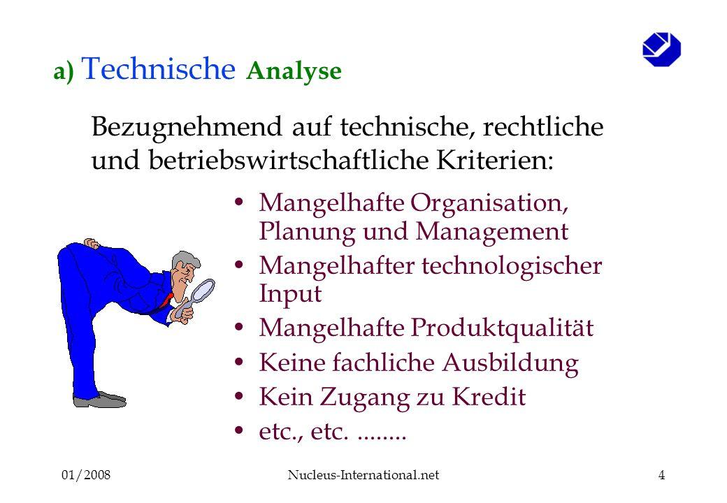 01/2008Nucleus-International.net4 a) Technische Analyse Mangelhafte Organisation, Planung und Management Mangelhafter technologischer Input Mangelhafte Produktqualität Keine fachliche Ausbildung Kein Zugang zu Kredit etc., etc.........