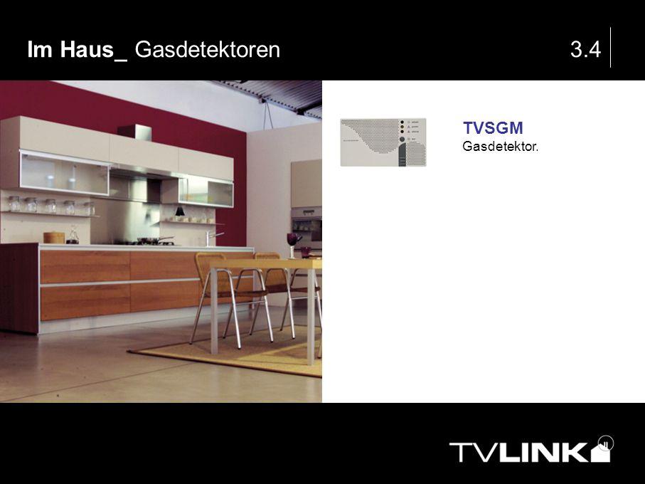 Im Haus_ Gasdetektoren3.4 TVSGM Gasdetektor.
