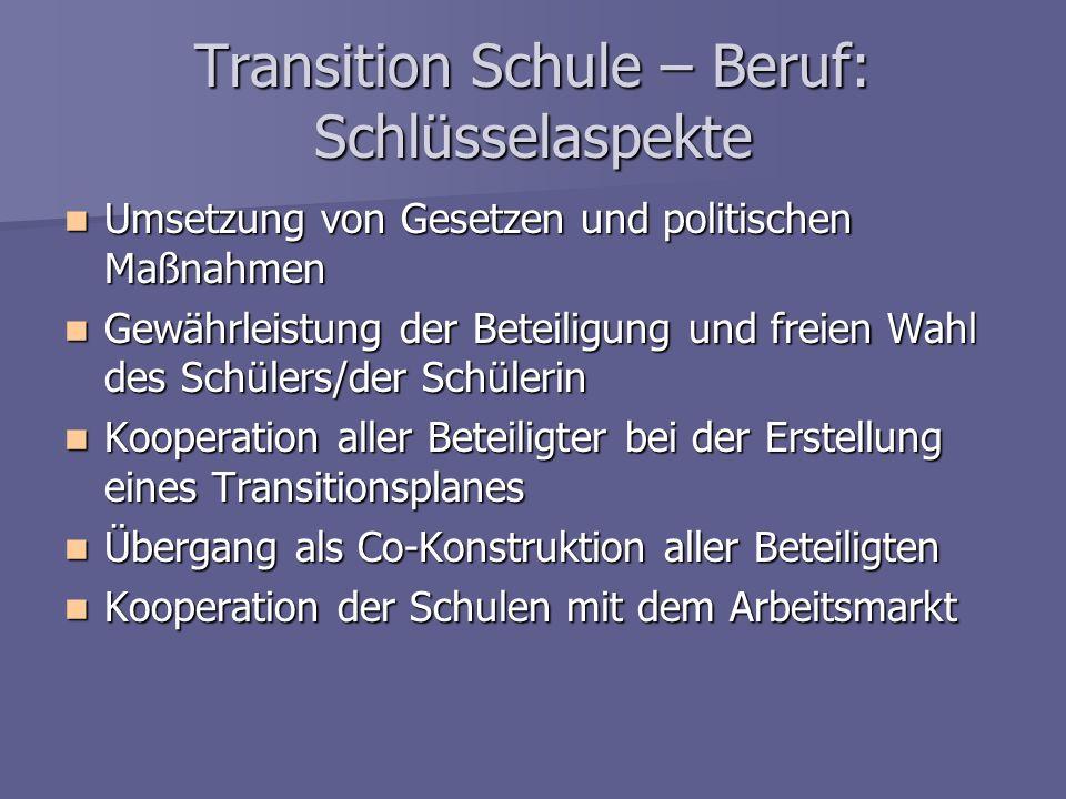 Transition Schule – Beruf: Schlüsselaspekte Umsetzung von Gesetzen und politischen Maßnahmen Umsetzung von Gesetzen und politischen Maßnahmen Gewährle