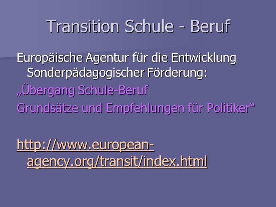 Transition Schule - Beruf Europäische Agentur für die Entwicklung Sonderpädagogischer Förderung: Übergang Schule-Beruf Grundsätze und Empfehlungen für