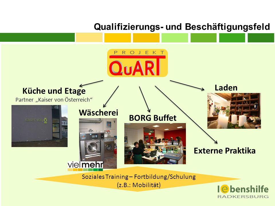 Qualifizierungs- und Beschäftigungsfeld Küche und Etage Partner Kaiser von Österreich Wäscherei BORG Buffet Externe Praktika Soziales Training – Fortb