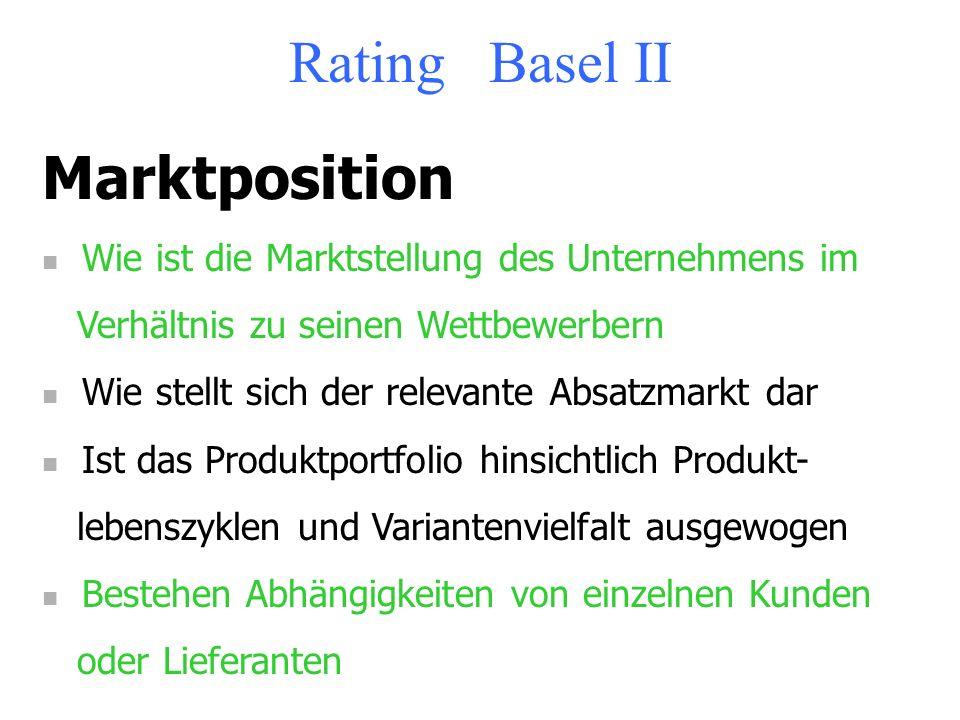 Rating Basel II Unternehmenskonzept Unterzieht sich das Unternehmen den Anforderungen des KonTraG Wie stellt sich die Strategie dar Existiert eine for
