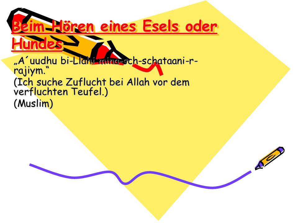 Beim Hören eines Esels oder Hundes A´uudhu bi-Llahi mina-sch-schataani-r- rajiym. (Ich suche Zuflucht bei Allah vor dem verfluchten Teufel.) (Muslim)