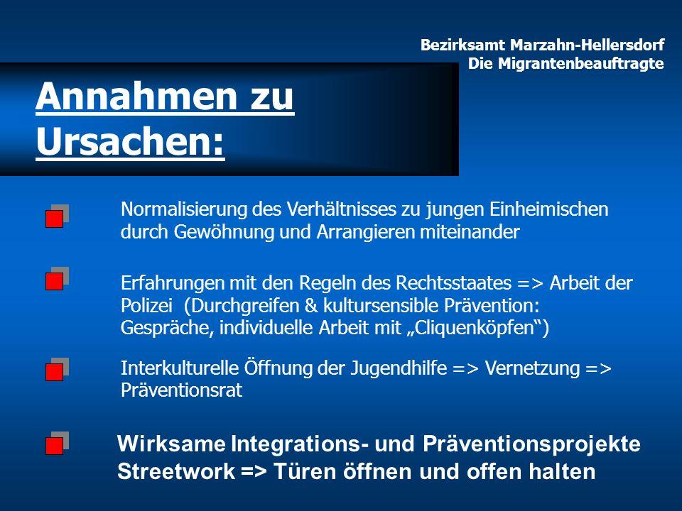 Annahmen zu Ursachen: Erfahrungen mit den Regeln des Rechtsstaates => Arbeit der Polizei (Durchgreifen & kultursensible Prävention: Gespräche, individ