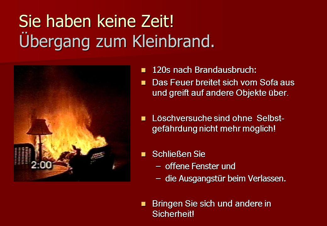 Sie haben keine Zeit! Übergang zum Kleinbrand. 120s nach Brandausbruch: 120s nach Brandausbruch: Das Feuer breitet sich vom Sofa aus und greift auf an