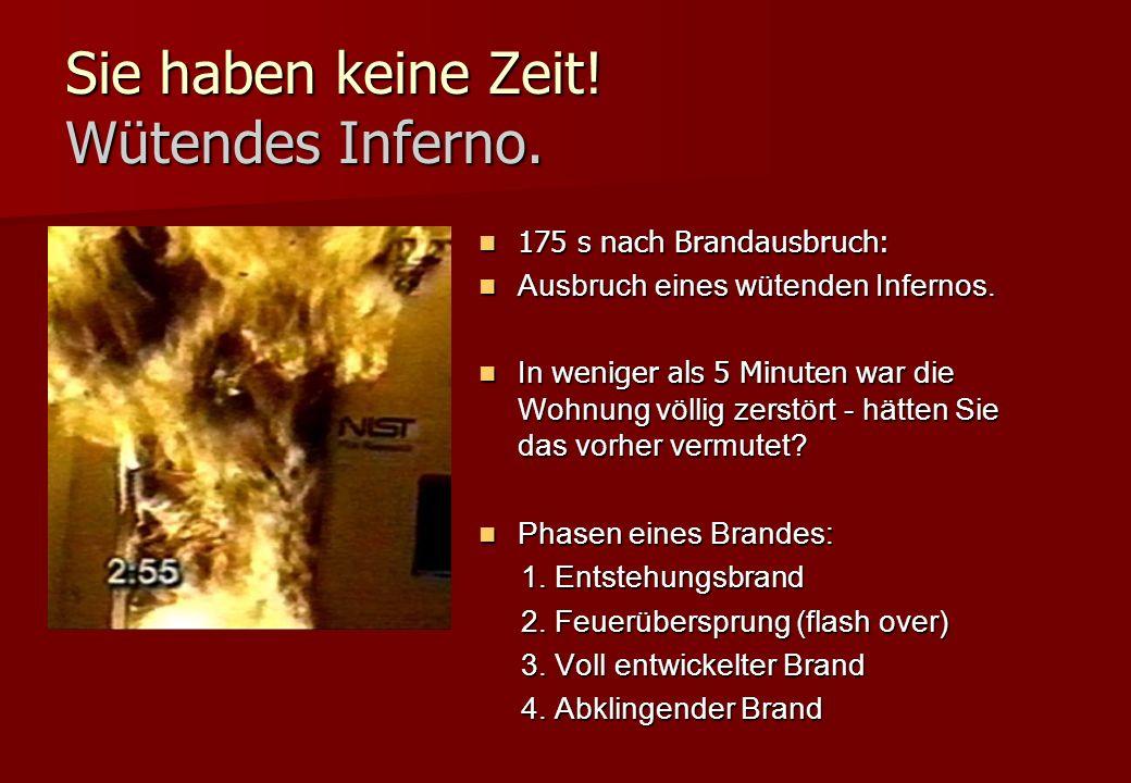 Sie haben keine Zeit! Wütendes Inferno. 175 s nach Brandausbruch: 175 s nach Brandausbruch: Ausbruch eines wütenden Infernos. Ausbruch eines wütenden