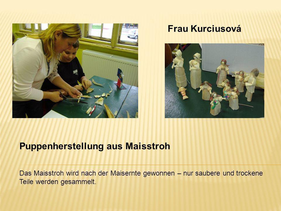 Frau Kurciusová Das Maisstroh wird nach der Maisernte gewonnen – nur saubere und trockene Teile werden gesammelt. Puppenherstellung aus Maisstroh