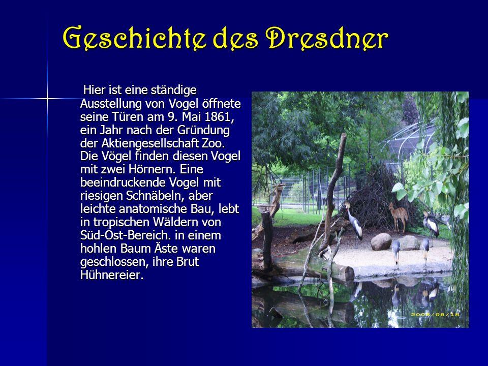 Geschichte des Dresdner Zoo von Dresden (Dresden, Deutschland) stammt aus dem Jahr 1861 und ist eines der ältesten in Europa.