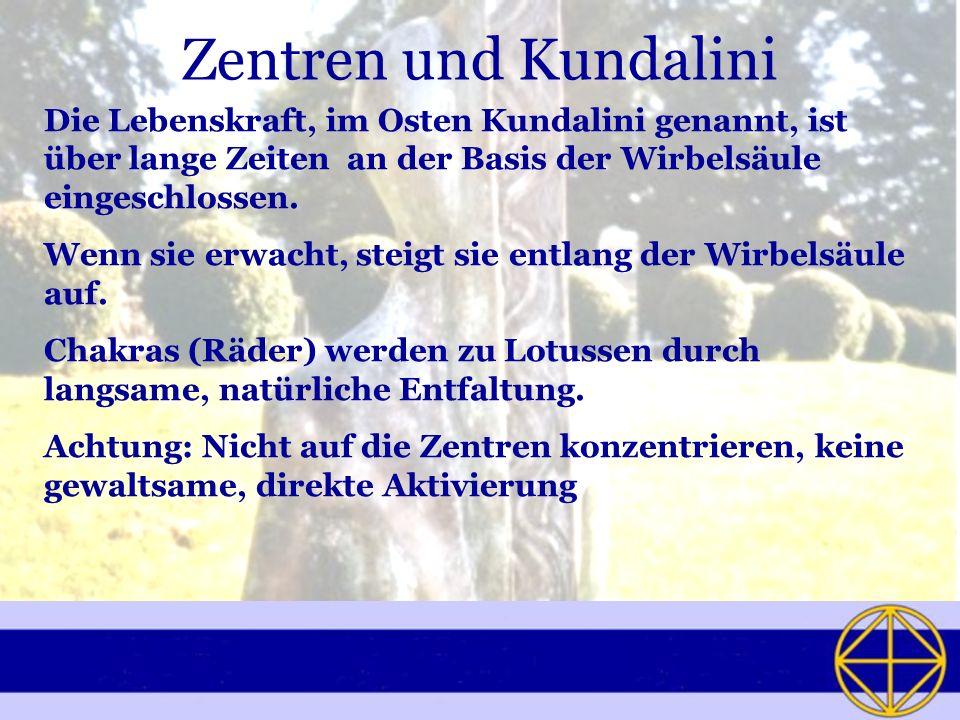 Zentren und Kundalini Die Lebenskraft, im Osten Kundalini genannt, ist über lange Zeiten an der Basis der Wirbelsäule eingeschlossen. Wenn sie erwacht