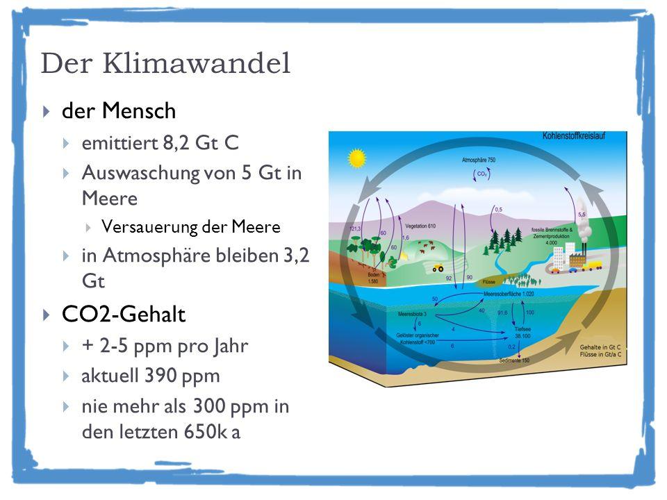Der Klimawandel der Mensch emittiert 8,2 Gt C Auswaschung von 5 Gt in Meere Versauerung der Meere in Atmosphäre bleiben 3,2 Gt CO2-Gehalt + 2-5 ppm pro Jahr aktuell 390 ppm nie mehr als 300 ppm in den letzten 650k a