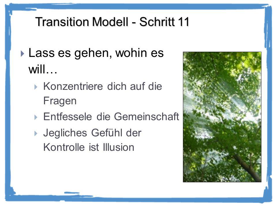 Transition Modell - Schritt 11 Lass es gehen, wohin es will… Konzentriere dich auf die Fragen Entfessele die Gemeinschaft Jegliches Gefühl der Kontrolle ist Illusion