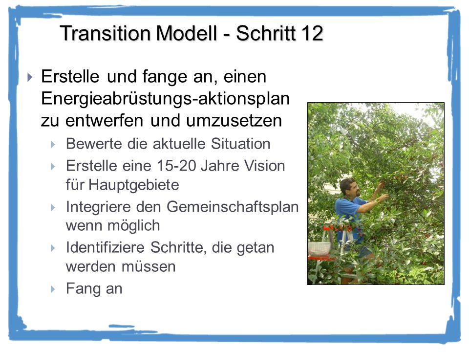 Transition Modell - Schritt 12 Erstelle und fange an, einen Energieabrüstungs-aktionsplan zu entwerfen und umzusetzen Bewerte die aktuelle Situation Erstelle eine 15-20 Jahre Vision für Hauptgebiete Integriere den Gemeinschaftsplan wenn möglich Identifiziere Schritte, die getan werden müssen Fang an