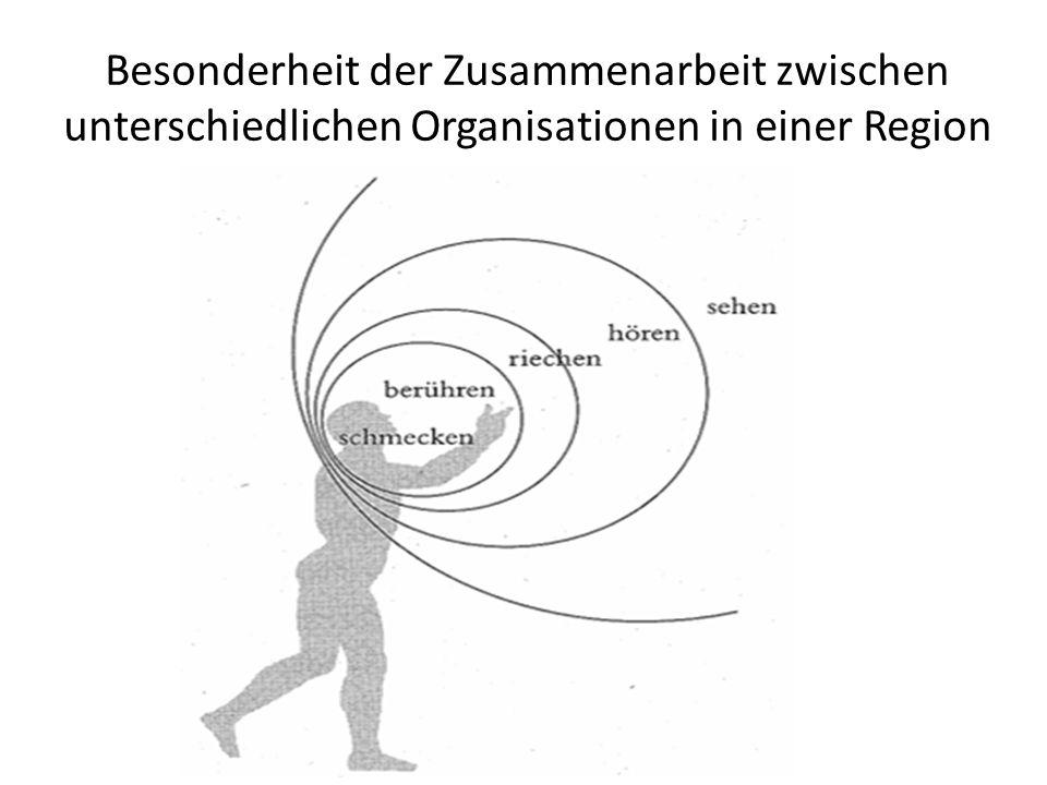 Besonderheit der Zusammenarbeit zwischen unterschiedlichen Organisationen in einer Region