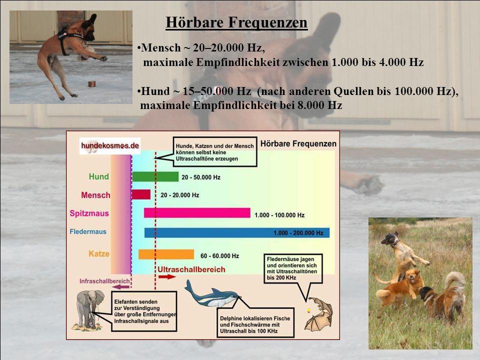 Mensch ~ 20–20.000 Hz, maximale Empfindlichkeit zwischen 1.000 bis 4.000 Hz Hund ~ 15–50.000 Hz (nach anderen Quellen bis 100.000 Hz), maximale Empfin
