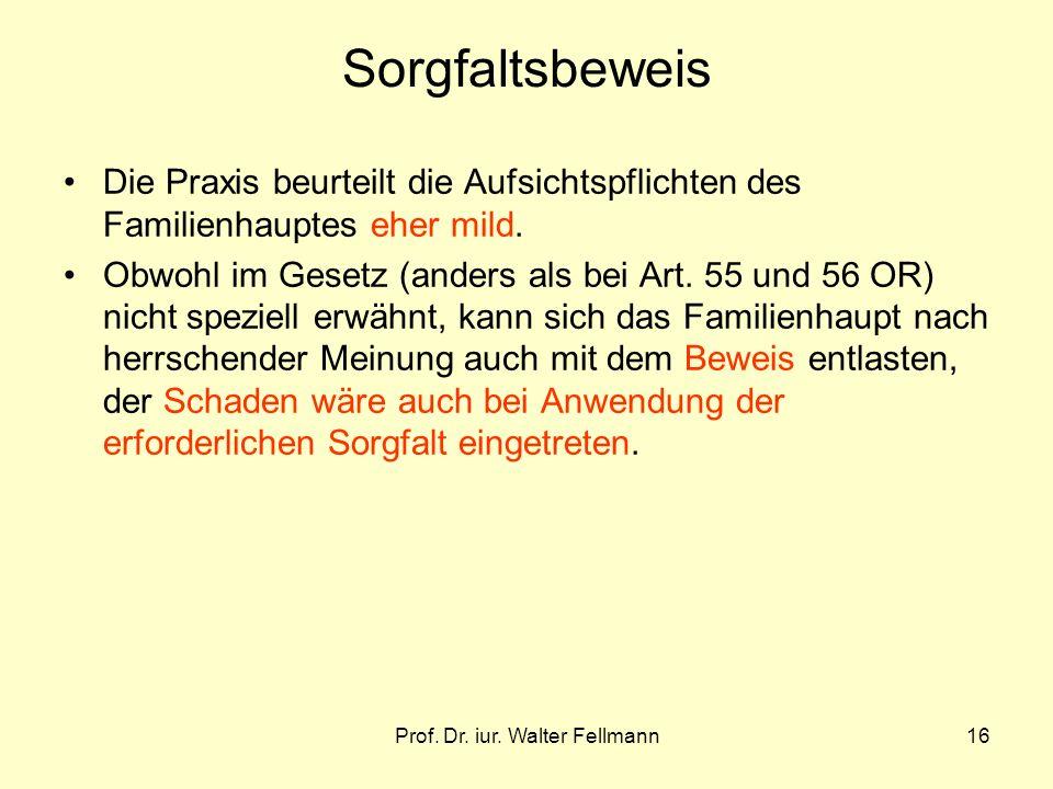 Prof. Dr. iur. Walter Fellmann16 Sorgfaltsbeweis Die Praxis beurteilt die Aufsichtspflichten des Familienhauptes eher mild. Obwohl im Gesetz (anders a