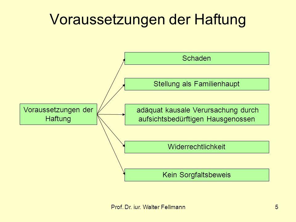 Prof. Dr. iur. Walter Fellmann5 Voraussetzungen der Haftung Schaden Stellung als Familienhaupt adäquat kausale Verursachung durch aufsichtsbedürftigen