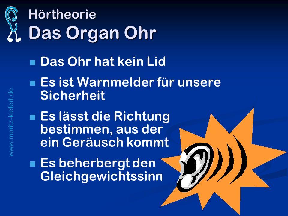 www.moritz-kiefert.de Hörtheorie Das Organ Ohr Das Ohr hat kein Lid Es ist Warnmelder für unsere Sicherheit Es lässt die Richtung bestimmen, aus der e