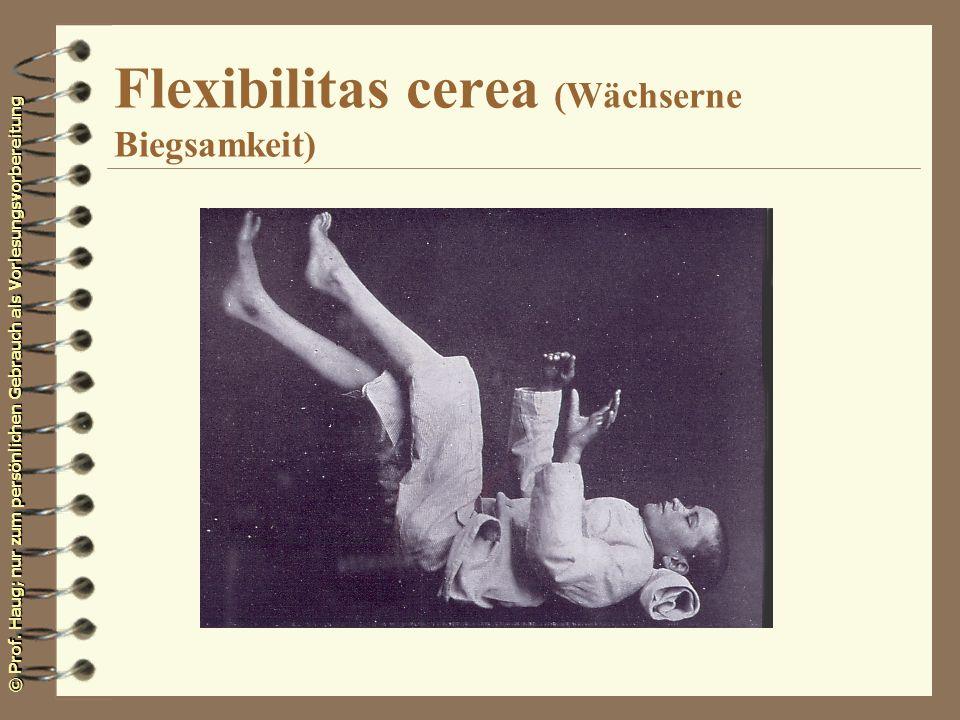 © Prof. Haug; nur zum persönlichen Gebrauch als Vorlesungsvorbereitung Flexibilitas cerea (Wächserne Biegsamkeit)